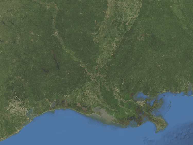 Satellite Map For Rochester Louisiana Regional